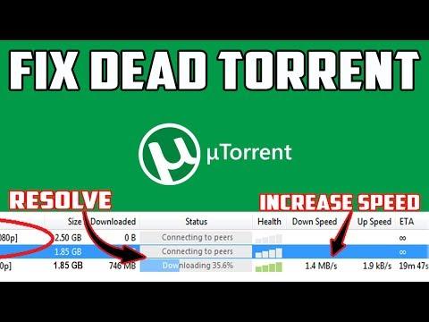 download TORRENT workshop manual